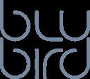 Blu Bird